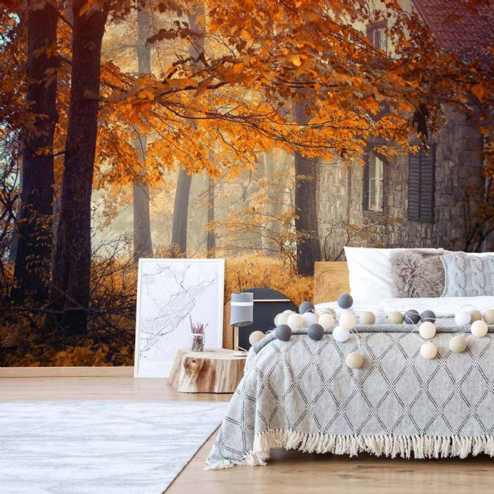 Wall mural photo wallpapers Forest in Autumn | Homewallmurals Shop